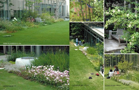 校园景观设计 送电子书 图6 校园景观设计 最新国际一流学