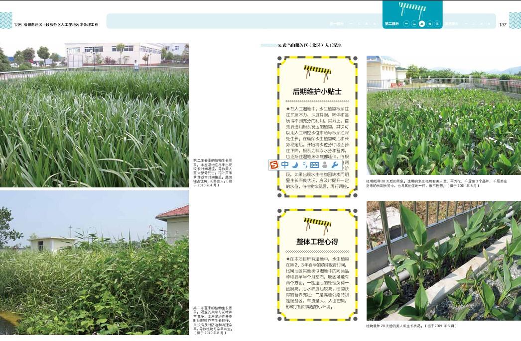 水体净化与景观——水生植物工程应用