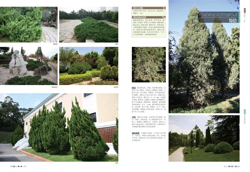 景观设计材料手册——植物篇