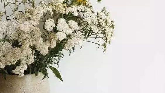 这样插花,即使花谢了屋子依然会很美