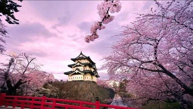 图解日本古建筑的智慧与匠人之魂